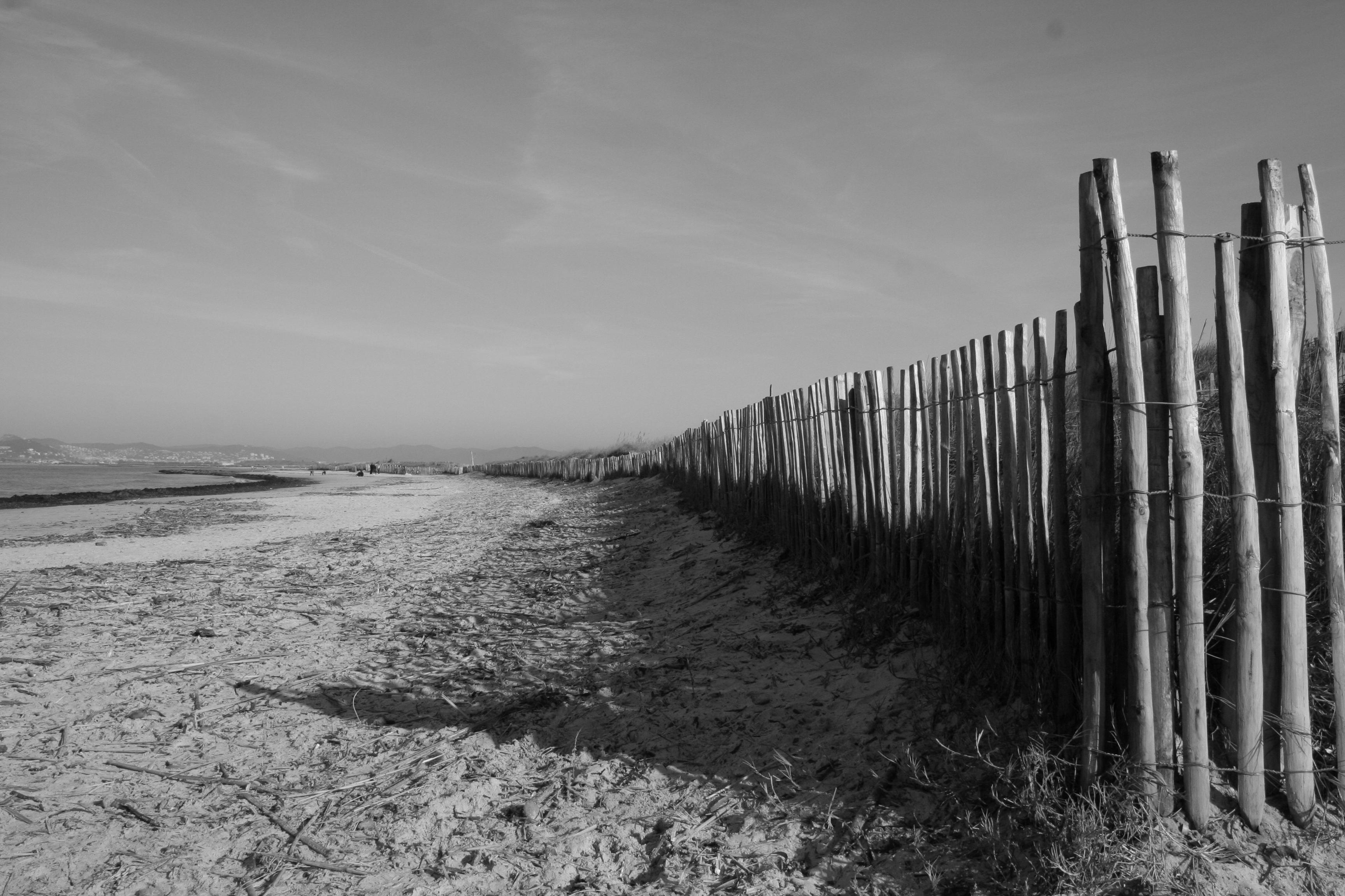 Photo Plage Noir Et Blanc